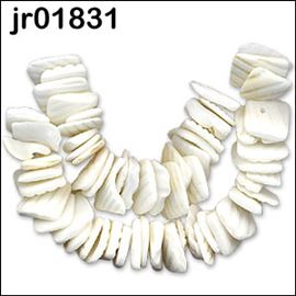 60 Pieces Of White Seashell Beads