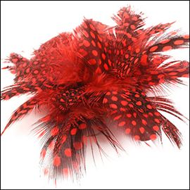 Guinea Feather Brooch. 100mm. Black & Red